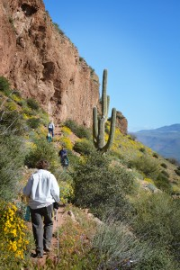 Hikers make their way to the Upper Cliff Dwelling, March 12, during Tonto National Monument's annual Heritage Days. This year Tonto was not only celebrating the annual event, but also the National Park Service Centennial. The event was a fee free weekend and hosted ancient technology demonstrations as well as the Kennedy Johnson San Carlos Warrior Group.